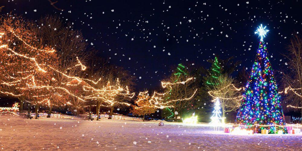 Tweedaagse kersttrip: leer zuinig verpakken